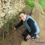 Gardening Unit (2)
